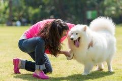 Apretón de manos con un perro Fotos de archivo libres de regalías