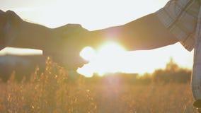 Apretón de manos de dos granjeros de los hombres de negocios en The Field en la puesta del sol almacen de metraje de vídeo
