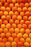 Apricot. Close-up image of apricot Royalty Free Stock Images