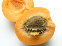 Apricot 2. Apricot on the table Royalty Free Stock Image