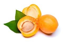 Apricot Stock Image