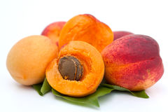 Apricot. Ripe apricot from the garden Royalty Free Stock Images