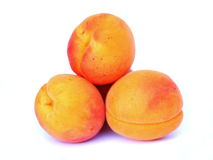 Apricot. Four fresh apricot on white background Royalty Free Stock Image