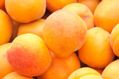 Apricot. The close-up of orange apricot royalty free stock images