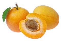 Apricot. On a white background royalty free stock image