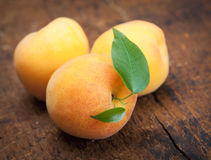 Apricot Royalty Free Stock Photo