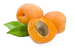 Apricot. Close up on a white background royalty free stock photo