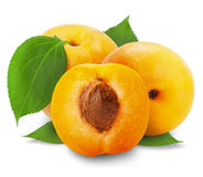 Apricot. On a white background stock image