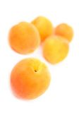 Apricot. Fresh apricots isolated on white background Royalty Free Stock Image