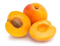 Free Apricot Stock Photography - 96083262