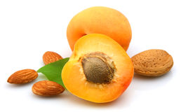 Apricot with almond Royalty Free Stock Photography