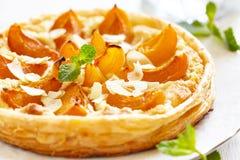 Apricot and Almond Tart Stock Image