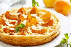 Apricot and Almond Tart Royalty Free Stock Photo