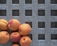 Apricot, apricots, albicocche Stock Photo