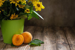Apricot. S on table with bouquet of daisies Stock Photos