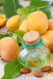 Apricot aroma oil royalty free stock image