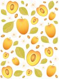 apricot background Royalty Free Stock Images