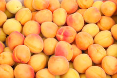 Apricot background Stock Photography
