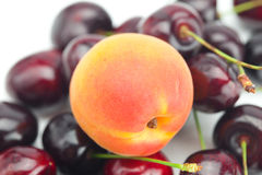 Apricot on background cherry Stock Photos