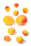 Apricot background of various sizes Stock Photography