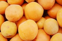 Apricot background Stock Photos
