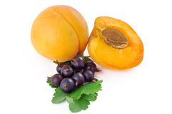 Apricot and black currant Royalty Free Stock Photography