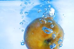 Apricot and bubbles Stock Image