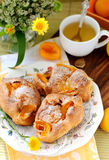 Apricot buns Stock Images