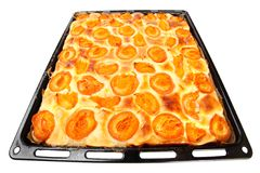 Apricot cake. Stock Images