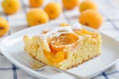 Free Apricot Cake Royalty Free Stock Image - 31402226