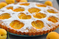 Apricot cake with cherries Royalty Free Stock Photos