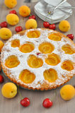 Apricot cake with cherries Stock Photo