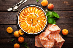 Apricot cake or pie with fresh fruits, cheesecake Royalty Free Stock Photos