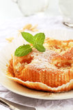 Apricot cake Royalty Free Stock Images