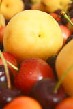 Apricot and cherry. The fruits of fruit trees Royalty Free Stock Photos