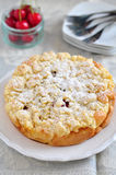 Apricot Cherry Streusel Cake Royalty Free Stock Image