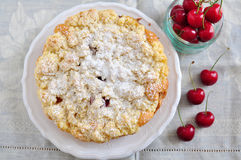 Apricot Cherry Streusel Cake Royalty Free Stock Photos