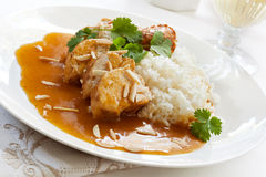 Apricot Chicken royalty free stock photography