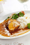 Apricot Chicken Stock Image