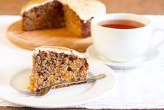 Apricot cinnamon cake Royalty Free Stock Photo