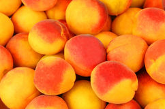 Apricot, close up Royalty Free Stock Photos