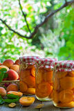 Apricot compote Royalty Free Stock Images