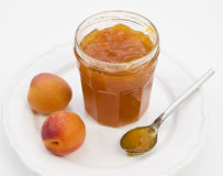Apricot conserve with fresh fruit Royalty Free Stock Images