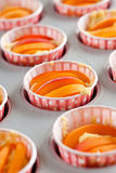 Apricot cupcakes ready to be baked Royalty Free Stock Photo