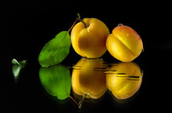 Apricot on a dark background. Juicy and ripe apricot fruits on a dark background Stock Image