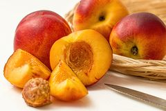 Apricot. Four apricots a seed and a small knife on the side Royalty Free Stock Photo