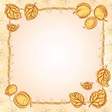 Apricot frame Royalty Free Stock Image
