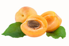 Apricot Fruit Cut Half fruit with Core. Ripe apricot fruits cut half fruit with core isolated on white Royalty Free Stock Images
