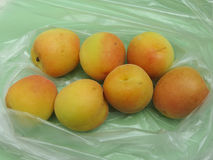 Apricot fruit food Royalty Free Stock Image