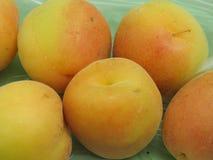 Apricot fruit food Royalty Free Stock Photos
